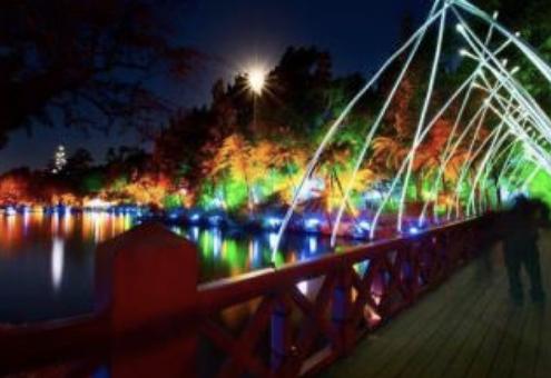 TSB Festival of lights